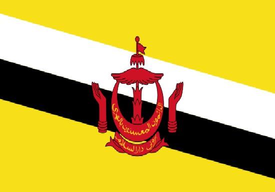 comprar bandera de brunei