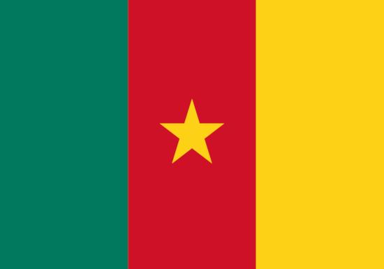 comprar bandera de camerun