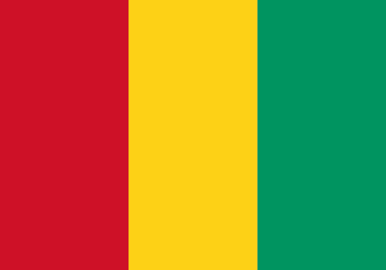 Comprar bandera de guinea