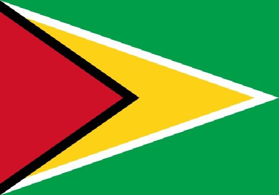 comprar bandera de guyana