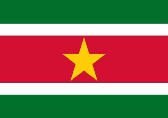 comprar bandera de suriman
