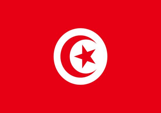 comprar bandera de tunez
