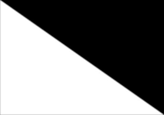 comprar bandera windsurfista