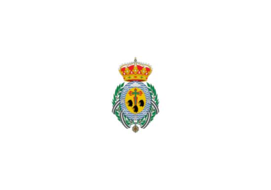 Bandera de Santa Cruz de Tenerife Ciudad