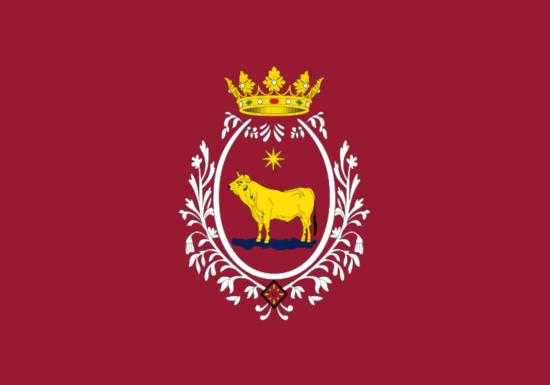 Comprar bandera de Teruel Ciudad
