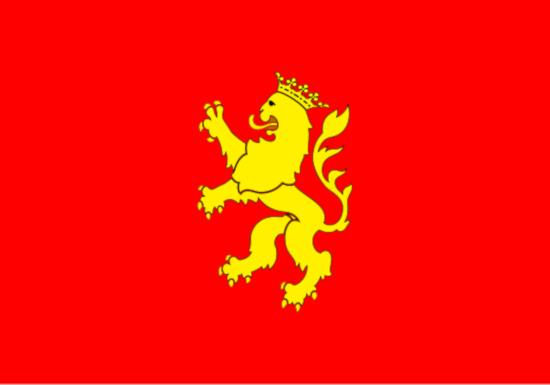 Comprar bandera de Zaragoza Ciudad